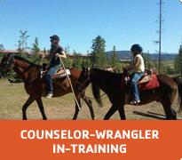 counselor-wrangler