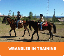 activity-wrangler-in-training