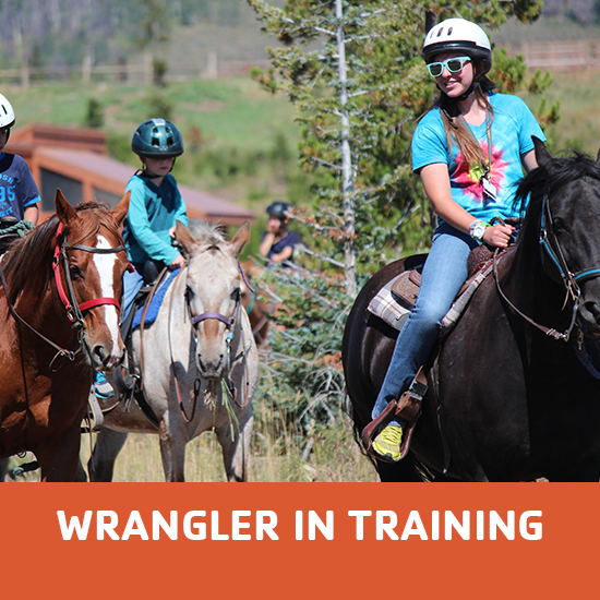 wrangler-in-training-featured